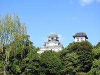 Kakegawa Castle的封面