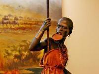 非洲艺术博物馆的封面