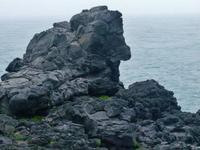 马罗岛  的封面