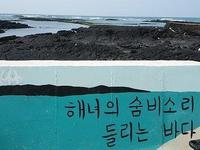 Gimnyeong Seonsegi Beach的封面