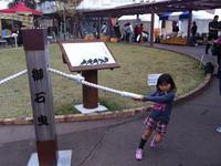 Izu Kogen Cherry Blossom Festival的封面