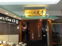 Tentei Narita International Airport No. 2T的封面