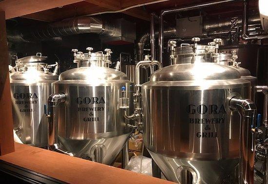 Gora Brewery & Grill的照片