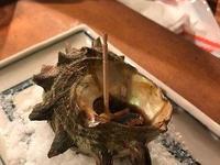 炉烧渔火的封面