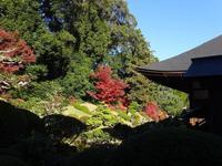 Ryotan-ji Temple的封面