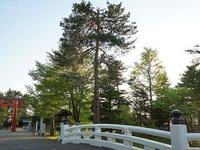 Hokkaido Gokoku Shrine的封面