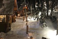 森林精灵阳台
