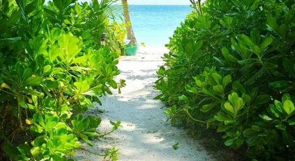 哈德提恩海滩俱乐部酒店的照片