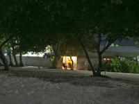 马尔代夫离岸流度假酒店的封面