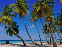 东菲利棕榈滩观景酒店的封面