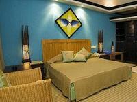 查雅暗礁艾莱霍酒店的封面