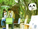 熊猫咖啡店(熊猫小姐和刺猬拍摄地)的封面