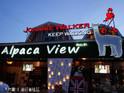 """""""草泥马""""露天餐厅Alpaca View的封面"""