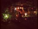 Edible Jazz Garden Cafe and Bar的封面