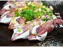 呈献海鲜概念料理的封面