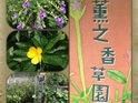 薰之园香草休闲农场的封面