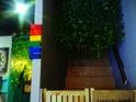 Rainbow PaPa的封面