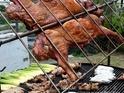阿里山邹族烤肉团队(山猪亮)的封面