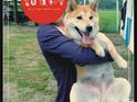 GoGo WaterWorld 狗狗水世界的封面