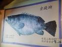 钓渔人餐厅的封面