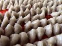 西螺三角大水饺的封面