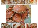 竹围渔港  龙虾饼的封面