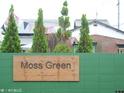 Green Moss的封面