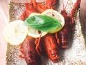 辣首龙虾的封面