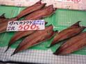 館山鮮魚店的封面