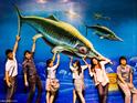芭提雅3D幻觉立体美术馆的封面