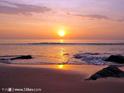 苏林海滩的封面