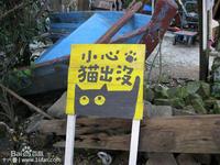 猴硐猫村的封面