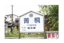 青桐车站的封面