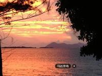 马达京岛的封面