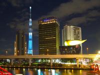 东京晴空塔的封面