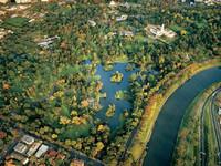 墨尔本皇家植物园的封面
