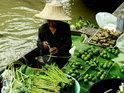 大林江水上市场的封面