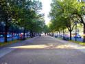 菩提树下大街的封面