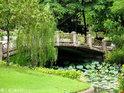 诗丽吉王后公园的封面