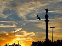 哥伦布纪念塔的封面