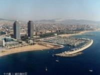 奥林匹克港的封面