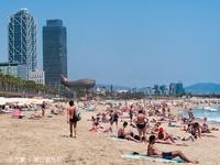 Barceloneta海滩的封面