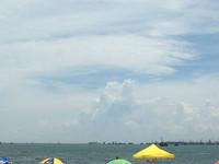 黃金海岸的封面