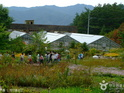 韩国自生植物园  的封面