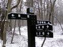 八公山自然公园的封面