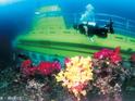 马罗岛潜水艇 的封面
