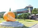 西归浦柑橘博物馆 的封面