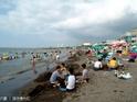 三阳海水浴场 的封面