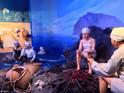 济州海女博物馆的封面