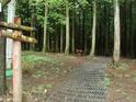寺水自然休养林 的封面